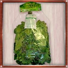 """Веник """"Экстра"""" из кавказского дуба с мятой в индивидуальной упаковке"""